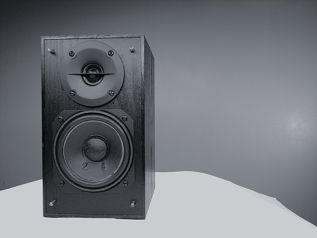 duży głośnik