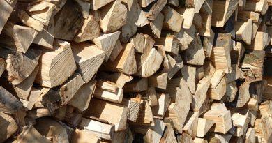 Jakim drewnem najlepiej palić w kominku?